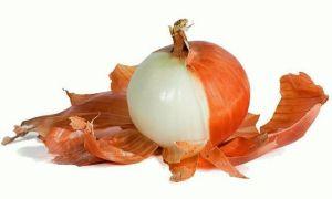 Влияние луковой шелухи на артериальное давление человека
