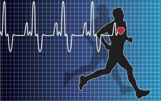 Показатели пульса при беге