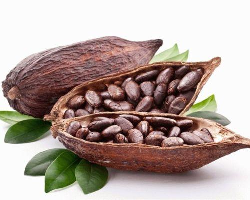 Влияние какао на артериальное давление