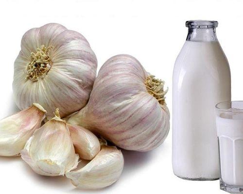 Польза чеснока с молоком при артериальном давлении