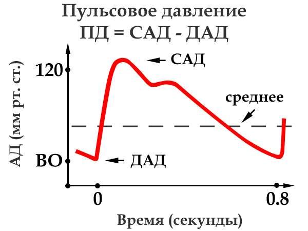 Расчет пульсового давления