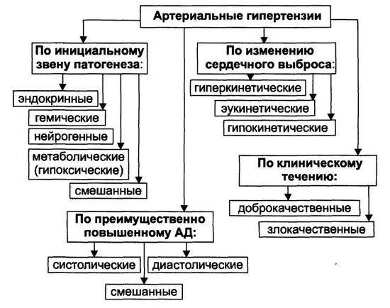 Основная классификация