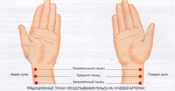 Пульс на руках