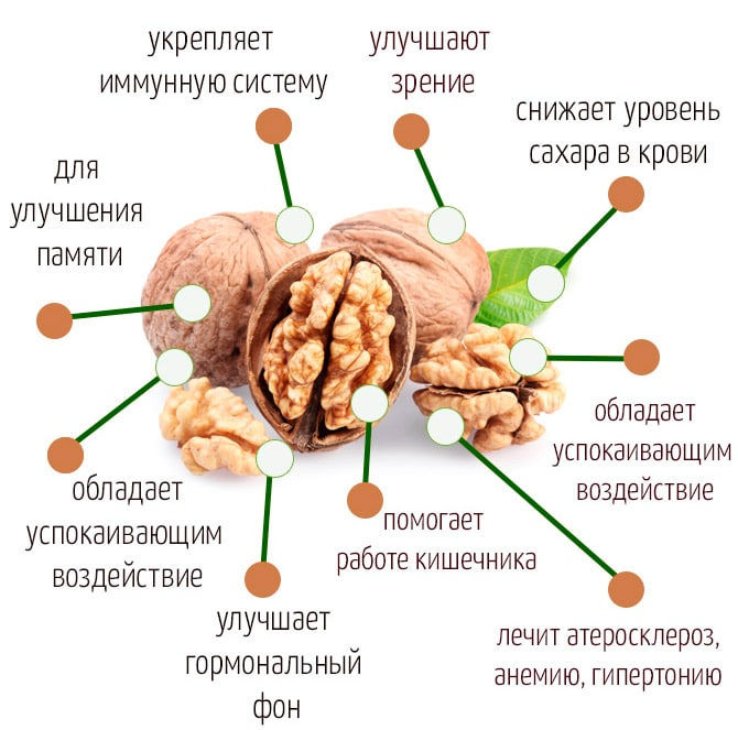 Орехи лечат гипертонию