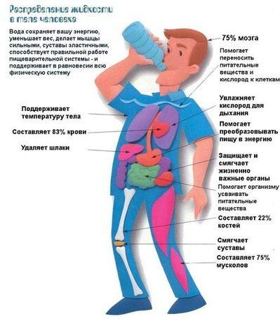 Вода при гипотонии