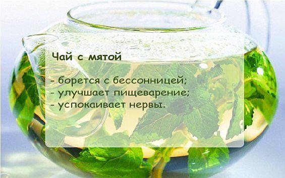 Чай с мятой от давления