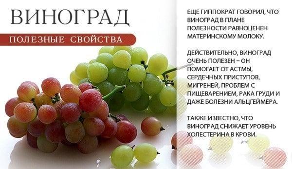 Виноград повышает АД